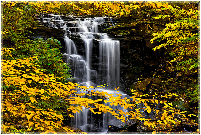 Falls in Yellow