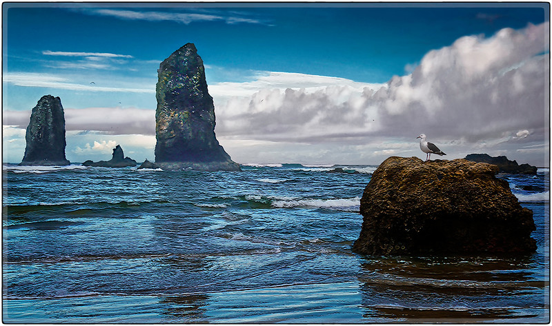 Cannon Beach II