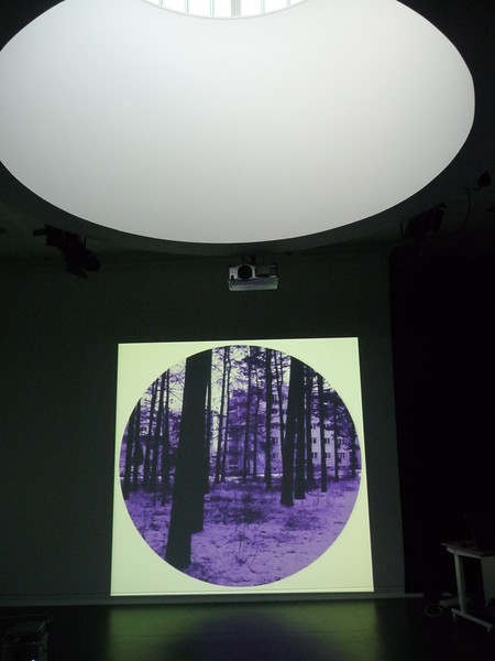 Livings - 2012 - projection - digital photography