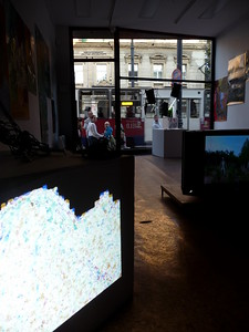 Field - 2014 - projection - 3d animation - cold cathode - netting - video - painting - photographic prints