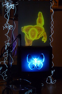 Black ships - 2012 - 3d animation - projection - found objects - tv monitor - light wire