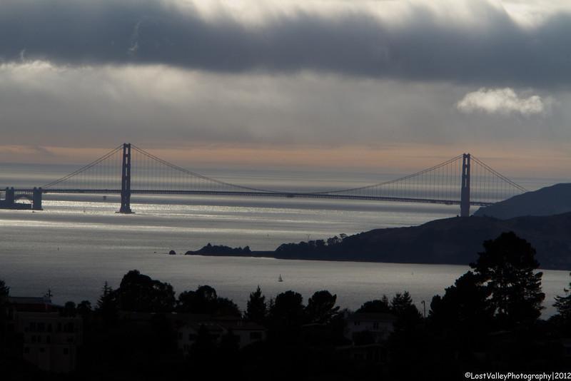 The Golden Gate Bridge shot from the Nimitz Trail in Tilden Regional Park.