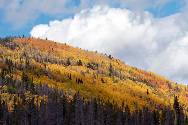 Lil Laramie Leaf Peeping Sept 2014