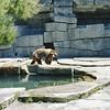 20 - SF Zoo