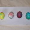 Easter break 015