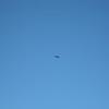 Ray flying 009