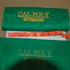 CalPoly logo 001