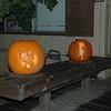 Pumpkins 004