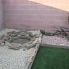 Grandma's backyard 005 (Small)