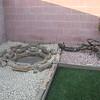 Grandma's backyard 005