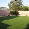 Grandma's backyard 003