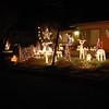 Christmas Lights 2011 002