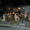 Christmas Lights 2011 007c