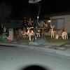Christmas Lights 2011 001