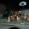 Christmas Lights 2011 006