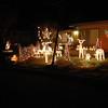Christmas Lights 2011 003