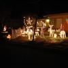 Christmas Lights 2011 005