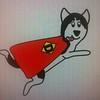 Dexter healthy husky3