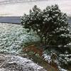 Snow in Illinois 3