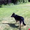 Kenya frisbee2