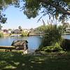 Home backyard 001 - lake view