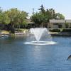 Home backyard 002 - fountain