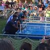 CC County Fair - duck races2