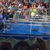 CC County Fair - duck races3