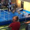 CC County Fair - duck races4