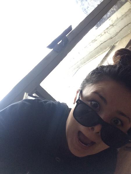 Lisa through dog door 5-8-2015