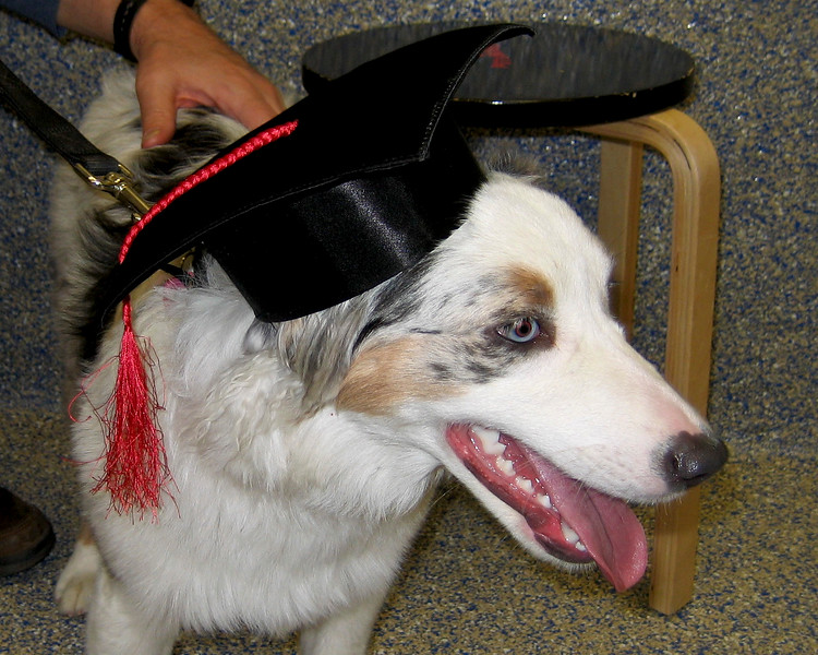 """Her diploma said """"The most likely to work for food."""" They got that right."""