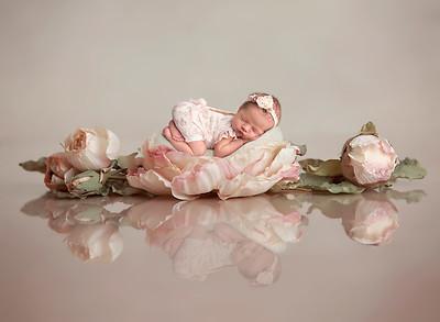Lily S. • Newborn