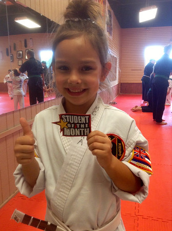 Lim Karate Family June 2014 Events -
