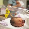 Baby: Maternity