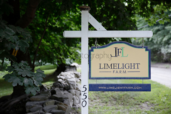 Lime Light Events