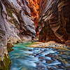 """Zion Narrows Ribbon of Yellow"" - Zion National Park, Utah"
