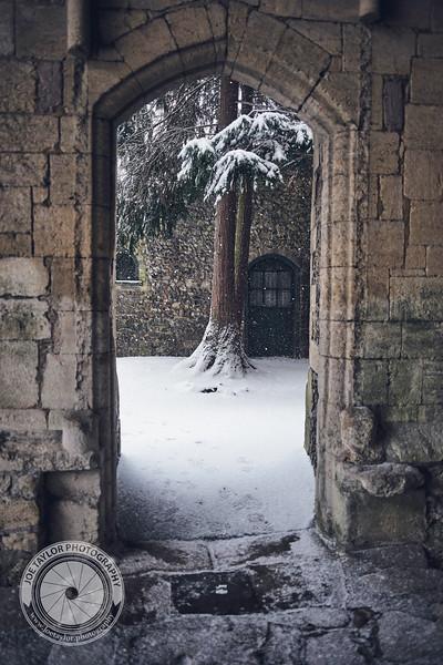 PRINT Snow Day 14