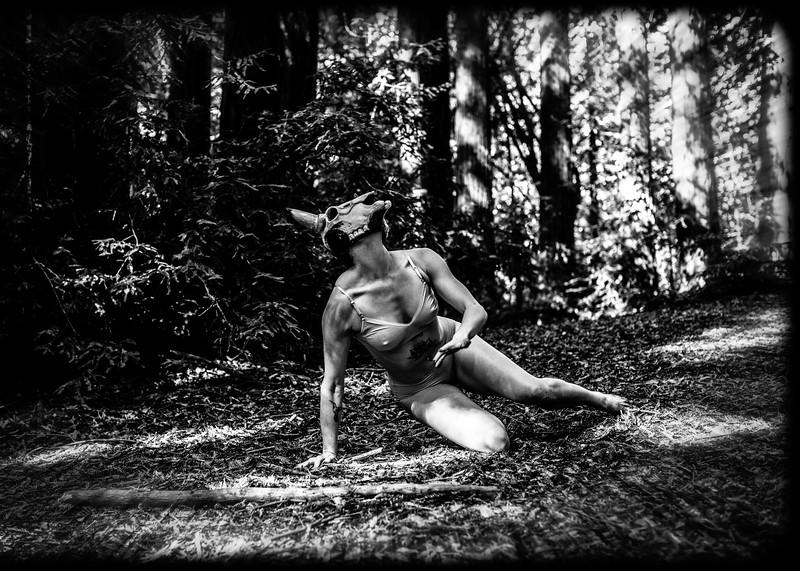 Dancer in the Woods I