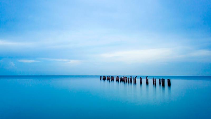 Simplicity in Blue 5/20