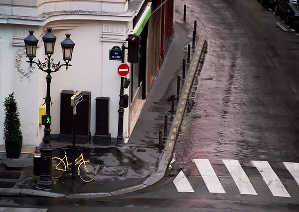 """Yellow Bicycle""<br /> Print Size: 13h x 19 w"