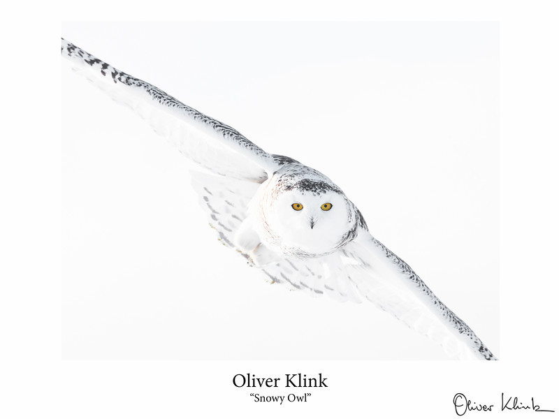 Klink_-3