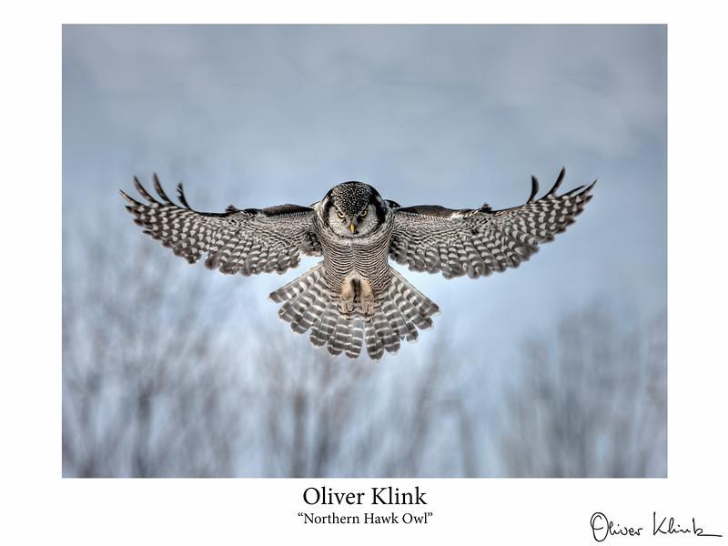 Klink_-1