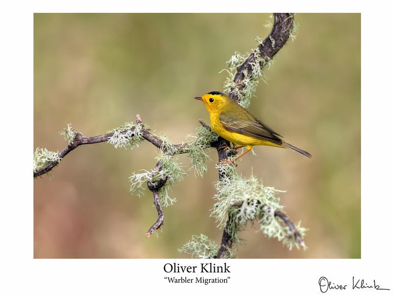 Klink_-15