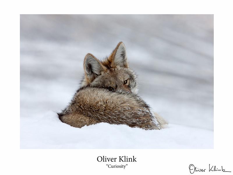 Klink_-5