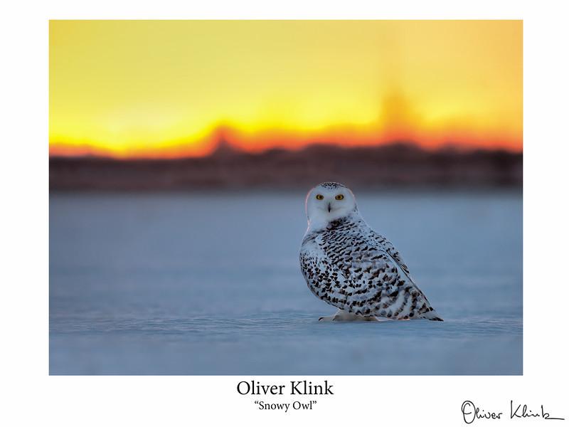 Klink_-16