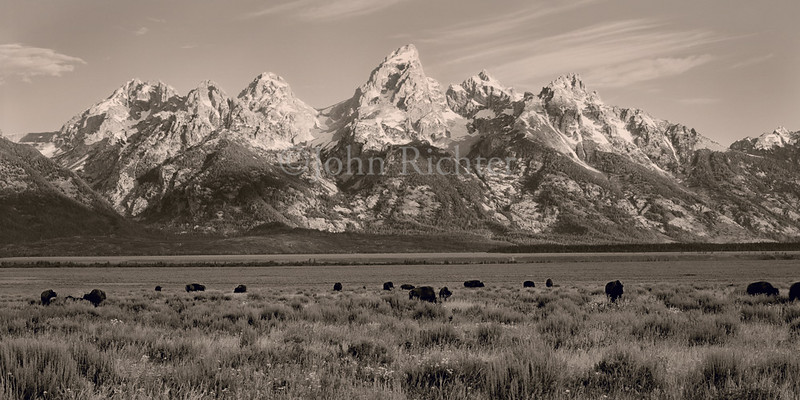 Grand Pasture