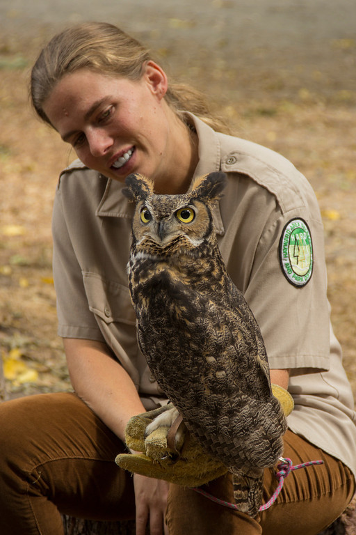 © 2013 Rachel Wooster - Great horned owl<br /> <br /> I am extremely happy that I was able to get a good portrait of the handler with Sulphur Creeks new mascot, great horned owl. It shows the love that the handler has for the animals, her relationship with them, and her passion for the Center. Seeing the good that these volunteers do with the animals as well as the education they provide was wonderful. It was a really truly enlightening and joyful experience. I just hope that my work can give just a little bit back to such a wonderful program.