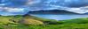 Nordic Pastures