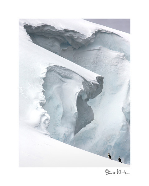 "Title: 	Mirror Shape<br /> Location:	Antarctica<br /> Size (Framed):	11""x9""<br /> Price:	$90<br /> Description:	I can see myself carved in the ice. Long beak and even an eye."