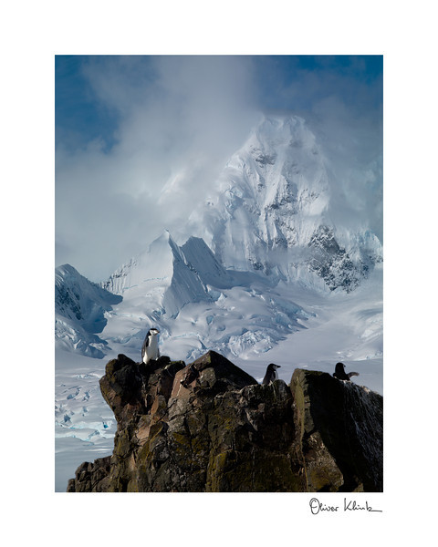 "Title: 	Top of the Hill<br /> Location:	Antarctica<br /> Size (Framed):	11""x9""<br /> Price:	$90<br /> Description:	The high ground is no picknick for chinstrap penguins. The view is beautiful and worth it."